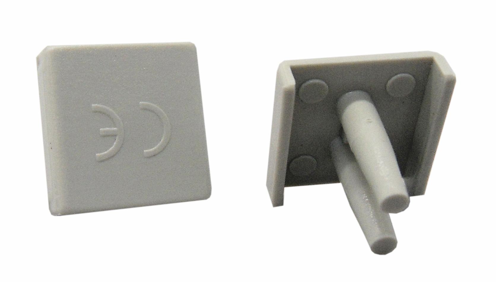 1 Stk Endplatte für 2-polige Verschienungen BS900118--