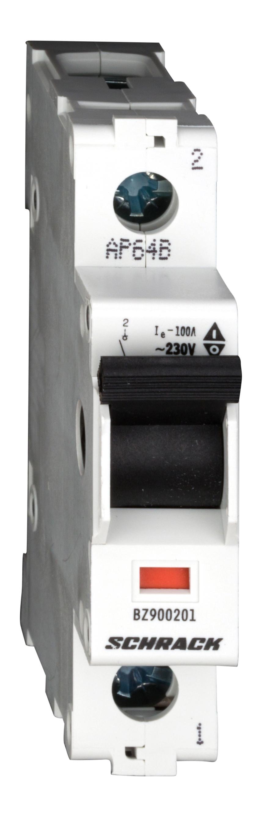 1 Stk Hauptlasttrennschalter, isoliert, 100A, 1-polig BZ900201--