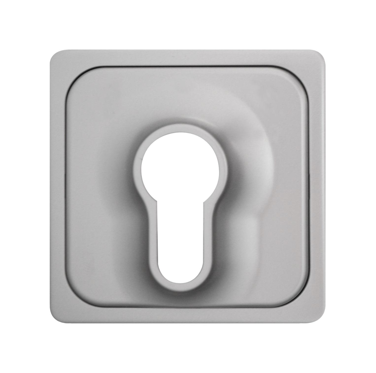 1 Stk Zentralplatte für Schlüsselschalter, Edelstahleffekt EL2030311-