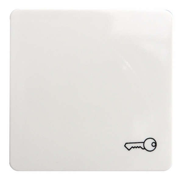 1 Stk Wippe mit Symbol Schlüssel reinweiß EL213124--