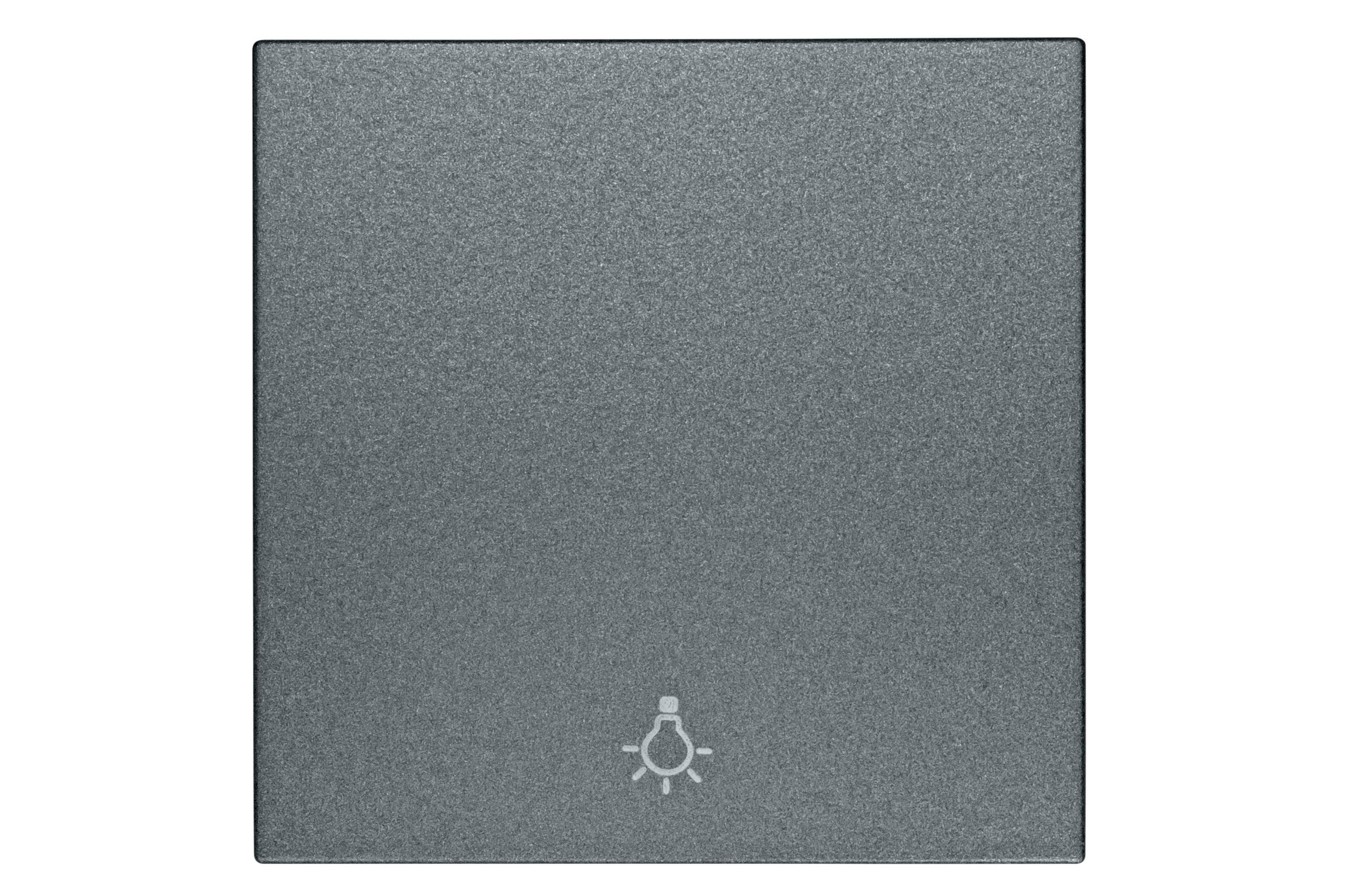 1 Stk Wippe mit Symbol Licht, anthrazit EV112005--