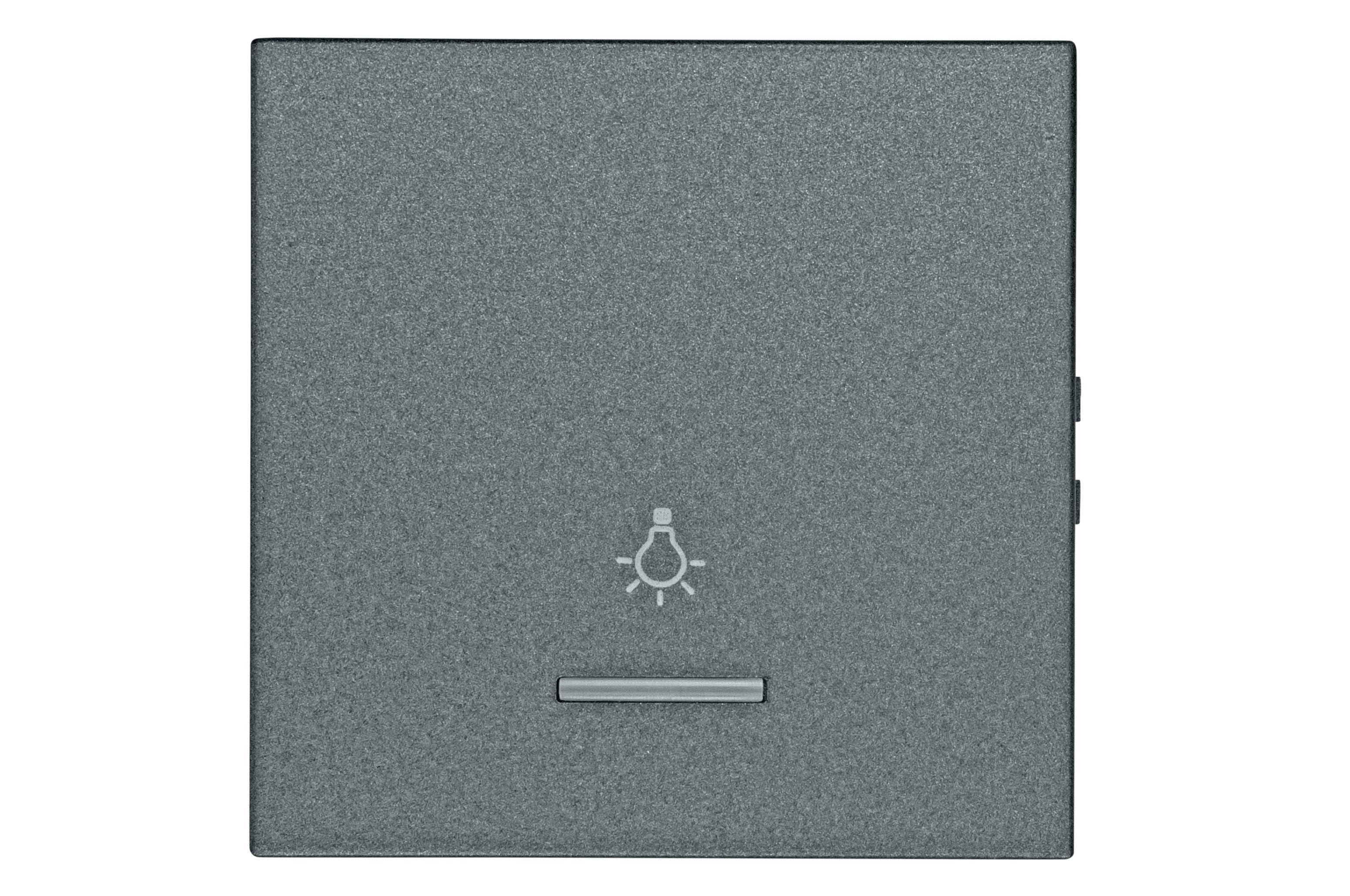 1 Stk Wippe mit transparenter Linse, Symbol Licht, anthrazit EV112009--