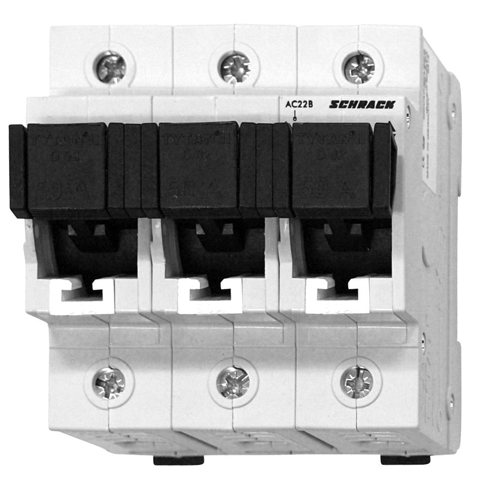1 Stk TYTAN II, D02-Sicherungslasttrennschalter,3-pol komplett 50A IS5047PL50