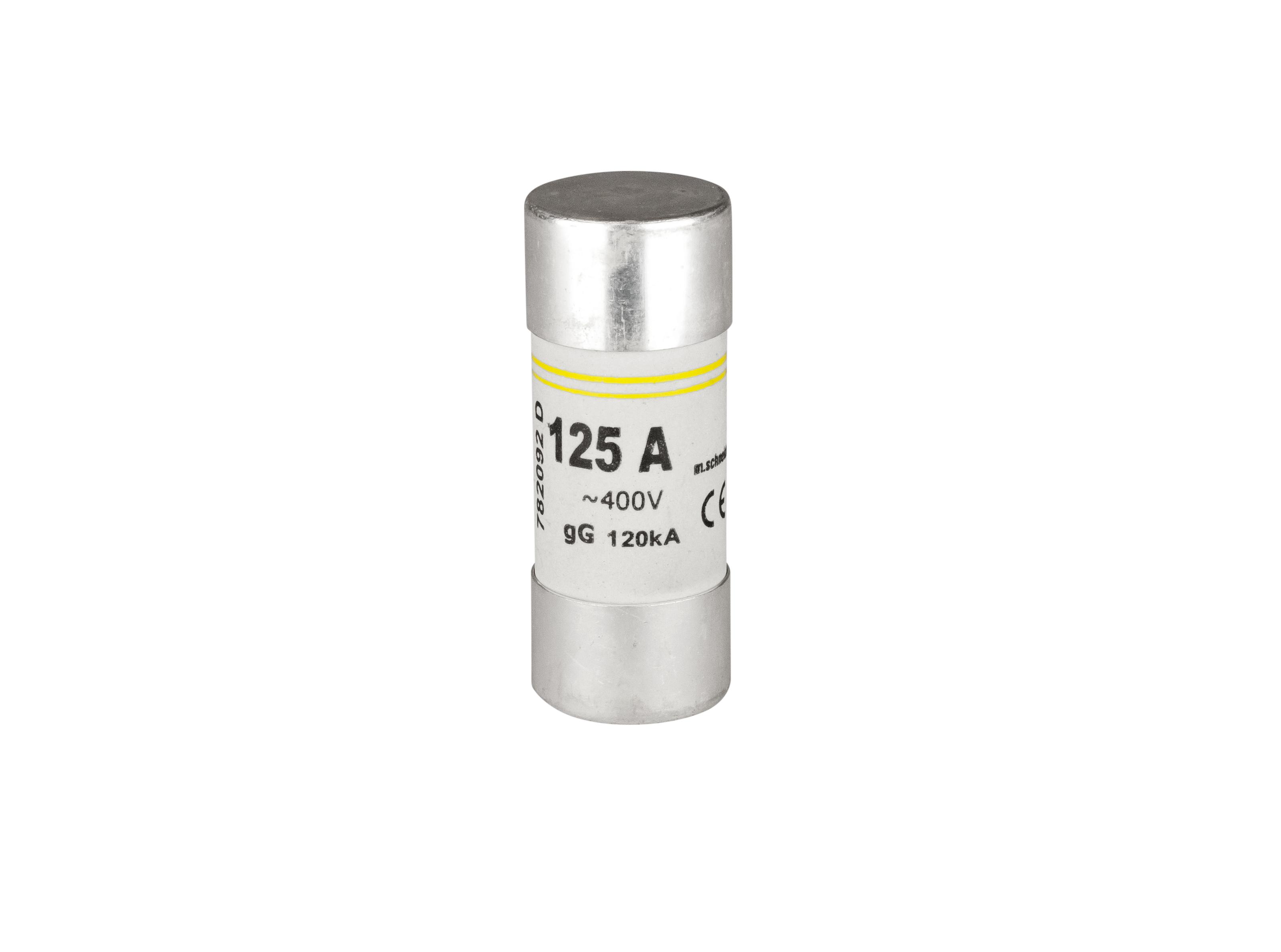1 Stk Zylindrische Sicherung, 22x58, 125A, Kennlinie gG, 400V AC ISZ22125--