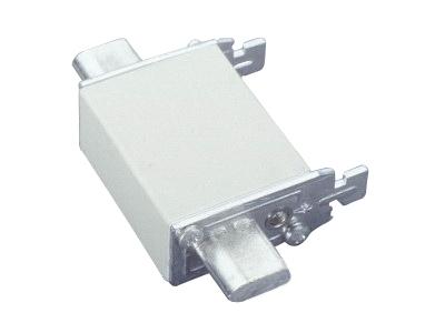 1 Stk Sicherungseinsatz 000 gG/gL 500V AC 100A SI035320--