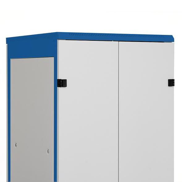 1 Stk Doppel-Tür Metall voll DS/DSZ/DSS(IP30) 42HE, B=800, RAL7035 DSRT4286--