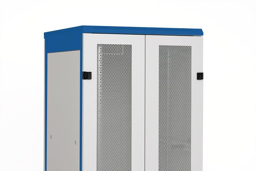 1 Stk Doppel-Tür Metall perfor.80% DS/DSZ/DSS(IP30) 45HE,B600,7035 DSRT4565--