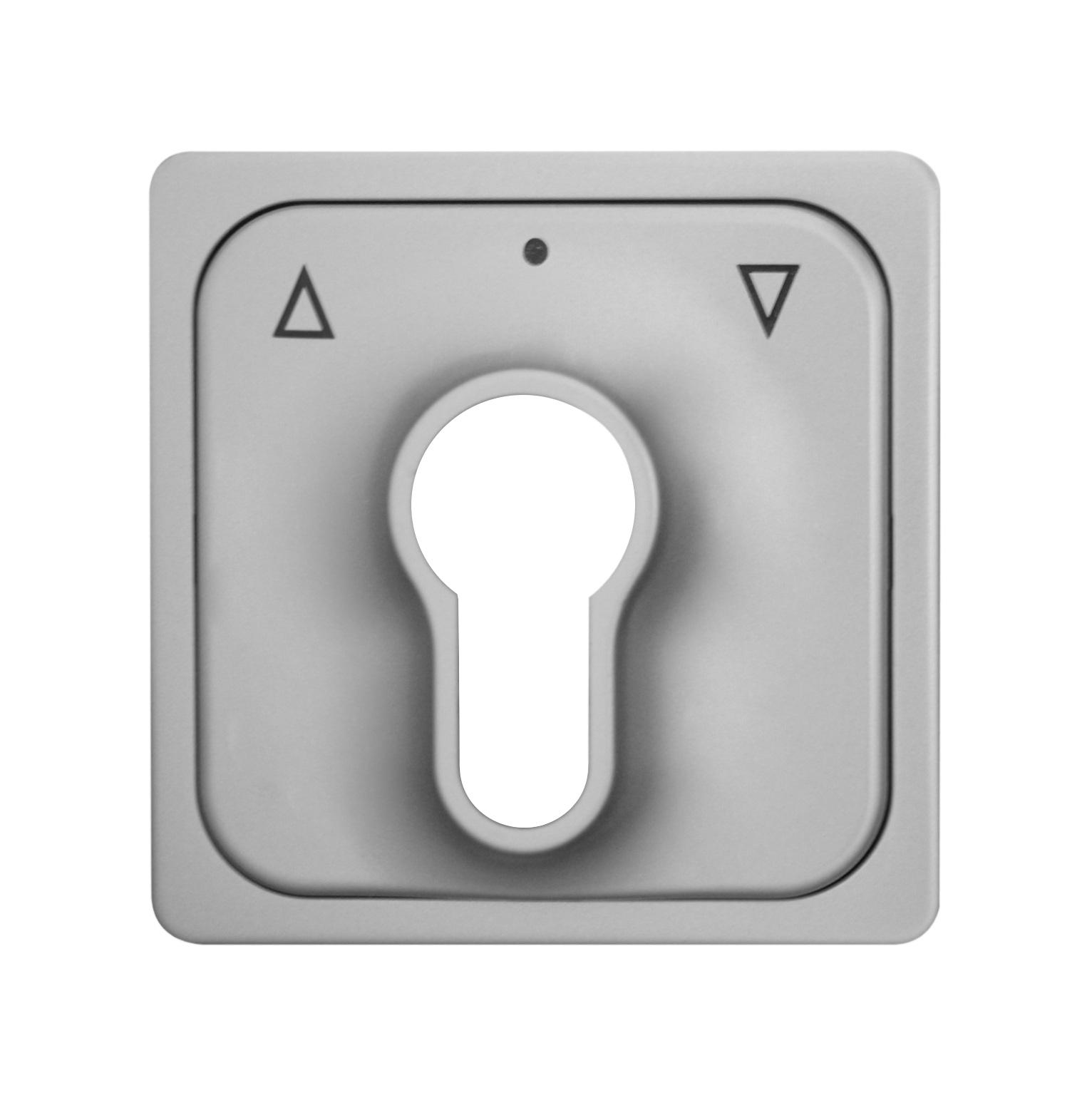 1 Stk Zentralplatte für Schlüsselschalter, Alueffekt EL2030319-
