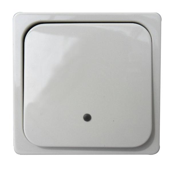 1 Stk System-Tastfläche 1-fach mit Leuchtmarkierung, reinweiß EL203344--