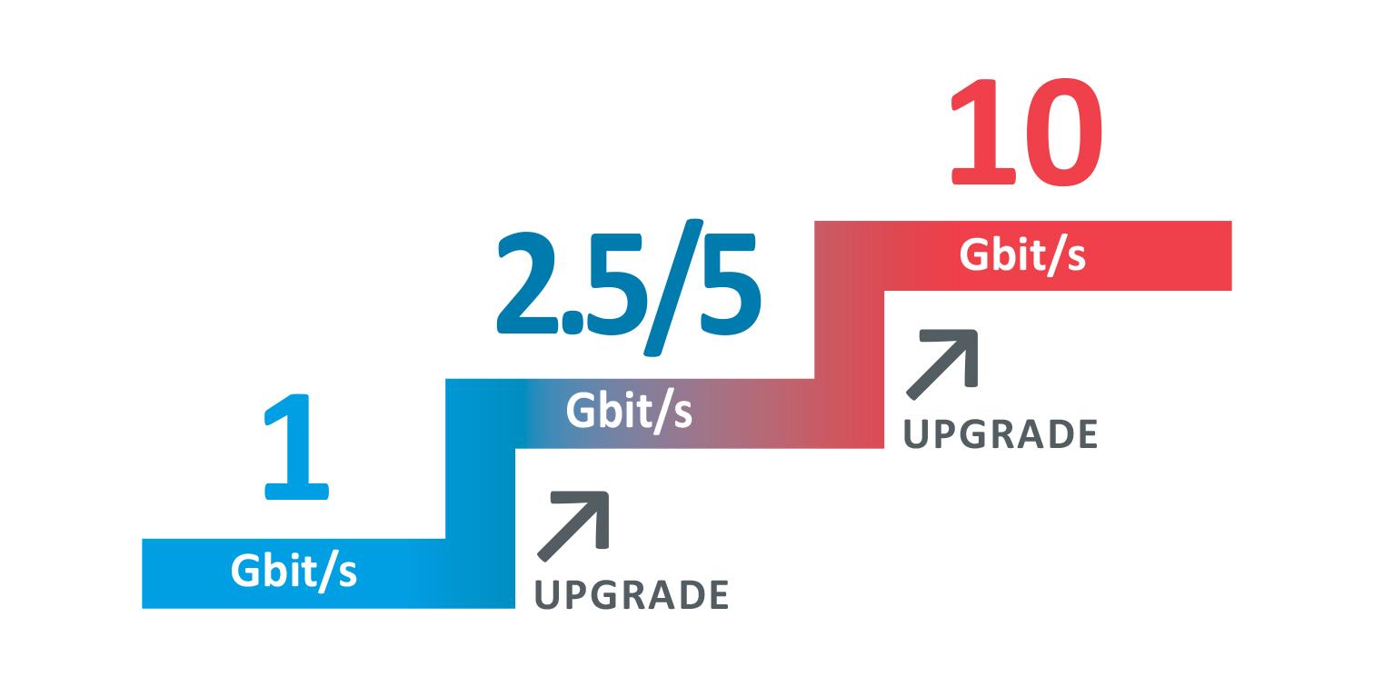 1 Stk NetXpert XG Netzwerk-Qualifizierer, Lizenz für ein Upgrade HMSNXXGUPG