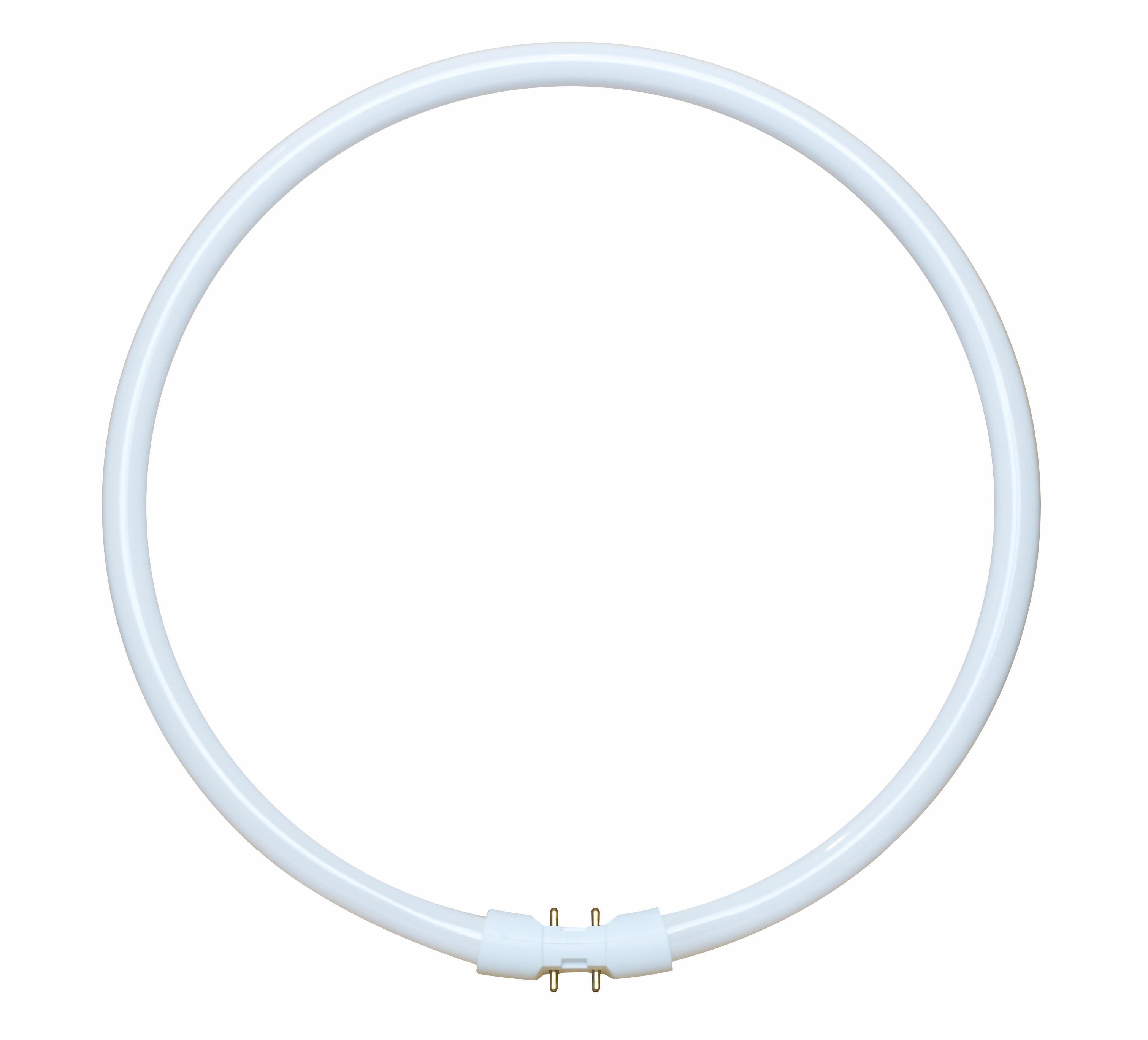 1 Stk T16-R 55W/840 2GX13 Leuchtstofflampe kreisförmig LI5W528588