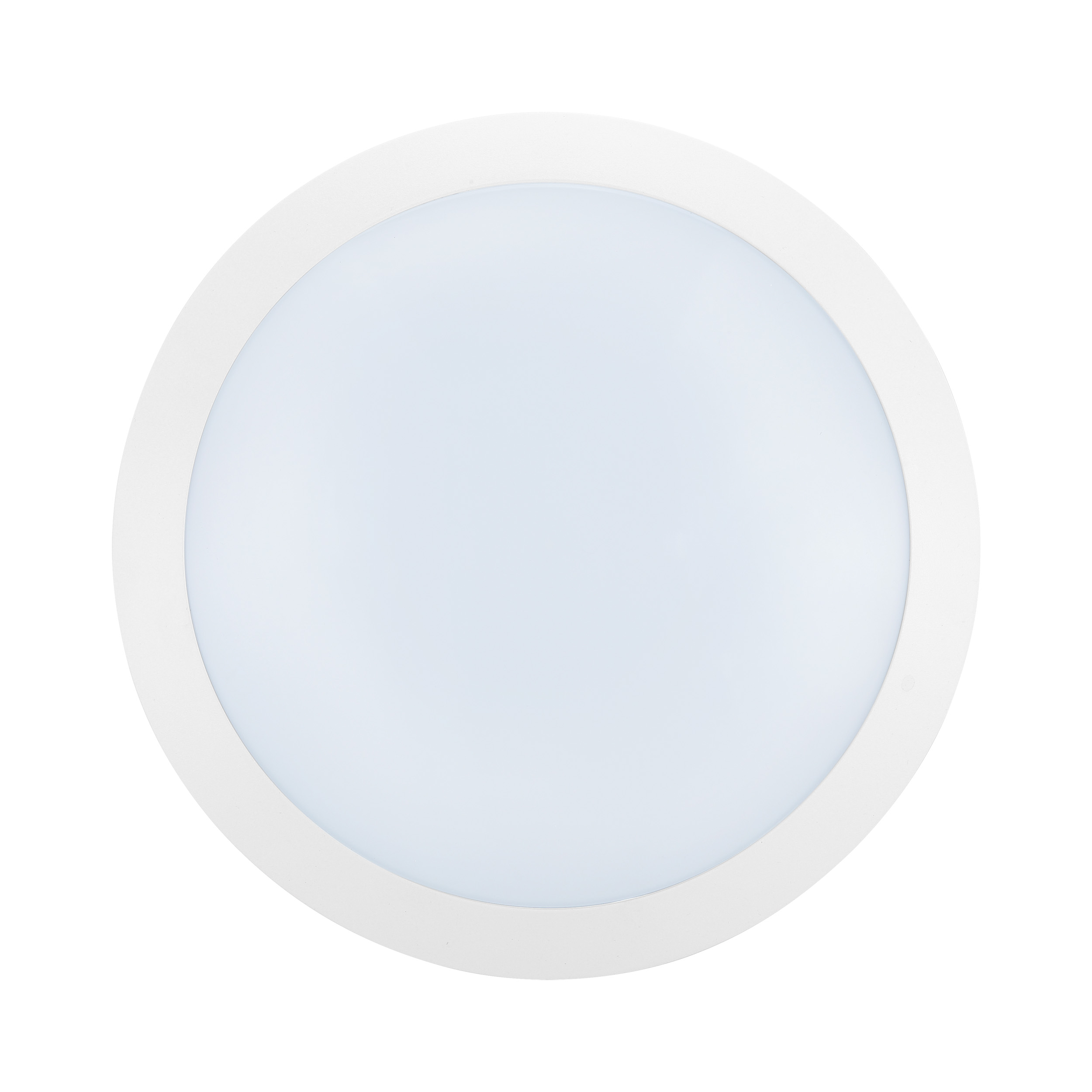 1 Stk Bellaria Wandaufbauleuchte rund 12W 4000K weiß IP66 LI62222---