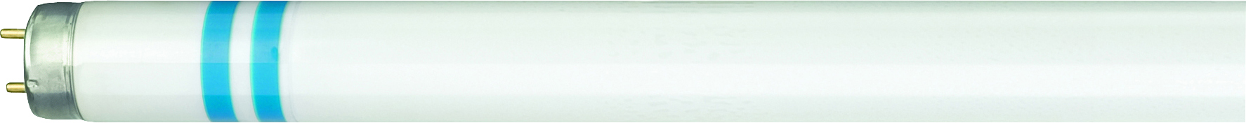 1 Stk TL-D Secura 58W/840 G13 Leuchtstoffröhre Neutralweiß LI82618540