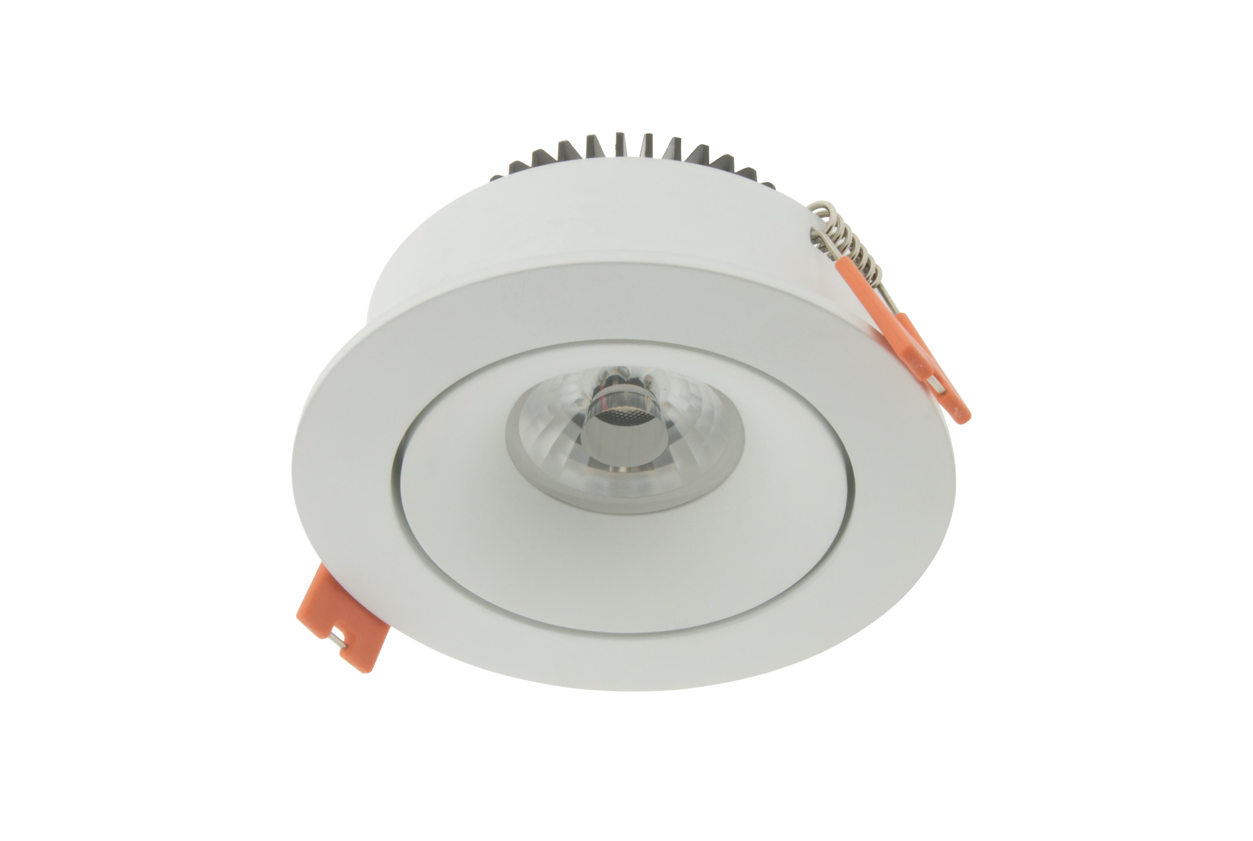 1 Stk LED Downlight 100 - IP43 | CRI/RA 97 (Kardanisch) Warmweiß LILD100236
