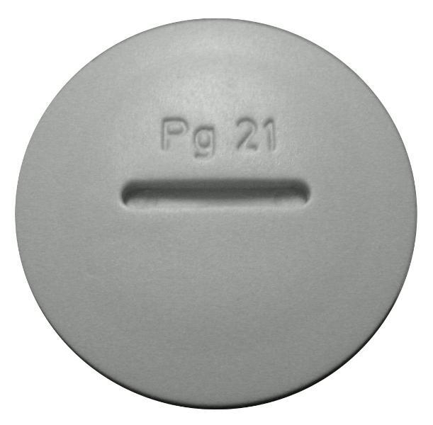 1 Stk Blindverschraubung PG 21 M273202---