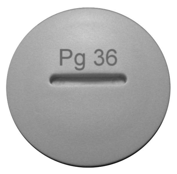 1 Stk Blindverschraubung PG 36 M273204---