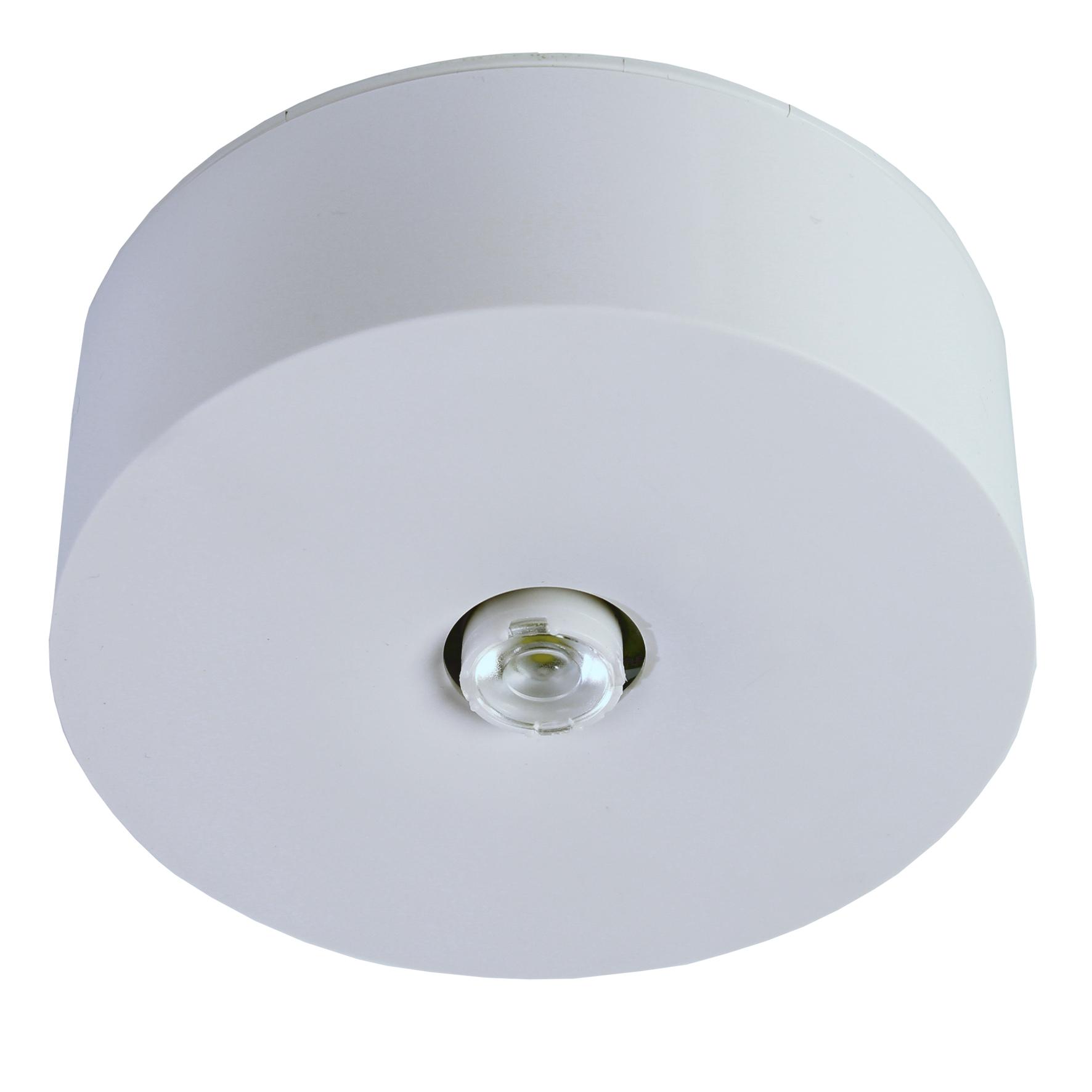 1 Stk Notleuchte IL  1x3W ERT-LED 230V EL Spot Deckenanbaumontage NLILDS029E